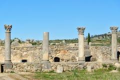 Romaren fördärvar, den forntida romerska staden av Volubilis morocco Arkivbilder