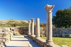 Romaren fördärvar, den forntida romerska staden av Volubilis morocco Royaltyfria Foton