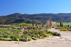 Romaren fördärvar, den forntida romerska staden av Volubilis morocco Arkivfoto