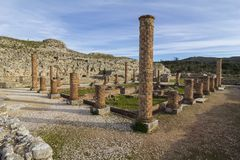 Romaren fördärvar i ConÃmbriga Arkivfoto