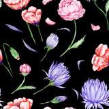 Romas Floral Pattern noir Photographie stock libre de droits