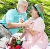 Romatic Senior Picnic Royalty Free Stock Image