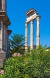 rome Италия форум римский Стоковое Изображение