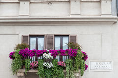 Rome Balcony in Piazza Navona Stock Images