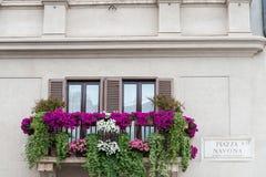 Rome Balcony in Piazza Navona. Rome, characteristic flowery balcony in Piazza Navona Stock Images