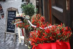 Rome bike with red hot chili peppers. Italy. Reportage view. The sights of a beautiful city. An Amazing decoration of simple things Royalty Free Stock Images