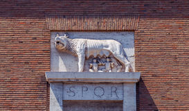 Rome. Capitol wolf. Stock Photography