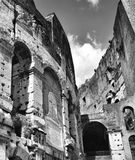 Rome Coliseum in black and white stock photo