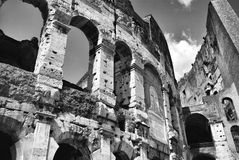 Rome Coliseum i svartvitt royaltyfri fotografi