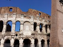 Rome - Colosseo. The roman empire Royalty Free Stock Photo