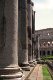 Rome The Colosseum Royalty Free Stock Photos