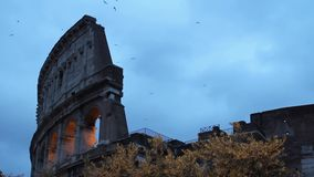 Rome, Colosseum in de avond stock footage