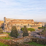 Rome Colosseum From Forum Ruins Royalty Free Stock Photo