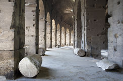 Rome - colosseum - indoor Royalty Free Stock Photo