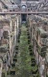 Rome Colosseum inre 02 Arkivbilder