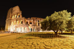 Rome, Colosseum. View on illuminated Colosseum in Rome Royalty Free Stock Images
