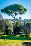 Rome in December. View of a roman house in December on a bright sunny morning Royalty Free Stock Photo