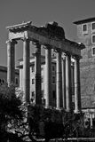 Rome fori imperiali. Building in Rome Royalty Free Stock Image