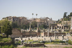 Rome, forum Royalty Free Stock Photo