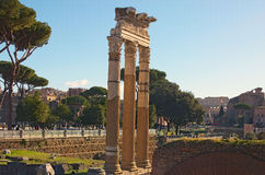 Rome Forum with ruins of historical buildings. Colosseum in the background. Rome, Italy Royalty Free Stock Photos