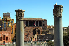 Rome the forum of Trajan Royalty Free Stock Images