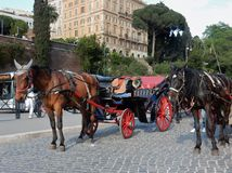 Rome - Horses with carriage at the Colosseum Stock Images