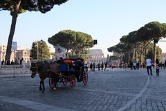 Rome - Imperial fora Royalty Free Stock Photo