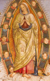 ROME, ITALIË: Freskoveronderstelling van Maagdelijke Mary in Basso-de kapel van dellarovere in Di Santa Maria del Popolo van de k Stock Afbeelding