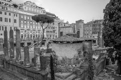 ROME, ITALIË - JULI 2017: Oude ruïnes in het Vierkant van Torre Argentinië, de plaats van de dood van Keizer Julius Caesar in Rom Royalty-vrije Stock Afbeelding