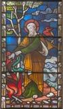 ROME ITALIEN - MARS 9 2016: Platsen St Paul med huggormen på handen på för helgon` för målat glass allra den anglikanska kyrkan Royaltyfri Bild