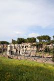 Rome, Italy. Palatine hill in Rome, Italy Royalty Free Stock Photography