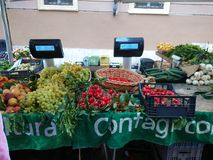 Fresh fruit at farmers` market royalty free stock images