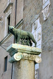 Rome, Italy - Capitoline Wolf stock photos