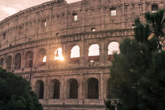 Rome, Italy: Colosseum, Flavian Amphitheatre Stock Images