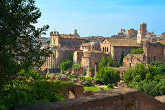 Rome, ITALY - JUNE 01: Roman Forum ruins in Rome, Italy on June 01, 2016 Royalty Free Stock Photos