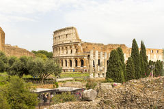 Rome , Italy: landscape of the Colosseum. Landscape of the Colosseum in Rome Royalty Free Stock Images
