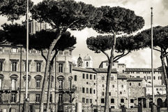 Rome, Italy. Photo from my trip to Rome Stock Photography