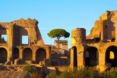 Rome. Italy. The Roman forum Royalty Free Stock Photos
