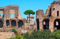 Rome. Italy. The Roman forum Royalty Free Stock Photo