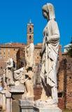 Rome.Italy. The Roman forum Royalty Free Stock Photography