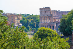 Rome.Italy. The Roman forum. The Colosseum Royalty Free Stock Images