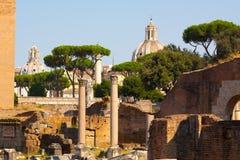Rome. Italy. The Roman forum. The Roman forum. Ruins of ancient Rome Stock Photo