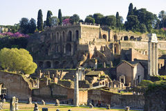 Rome Italy roman forum ruins   antiquity. Empire archaeology   ancient marble Stock Image