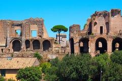 Rome.Italy. The Roman forum.Views of the city Stock Photos