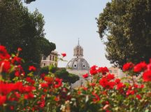 Rome italy summer travel vacation red flowers church. Sunny day hot weather stock photo