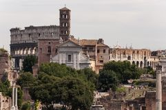 Ancient Rome Landscape. Rome, Italy. View of colosseum from Roman Forum Royalty Free Stock Photography
