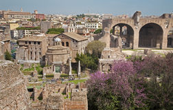 Rome - outlook from Palatne hill to Forum Romanum Royalty Free Stock Photography