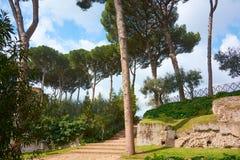 Rome Palatine Arkivfoto