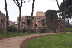 Rome - Palatine Hill - bath of Septimius Severus Stock Photography