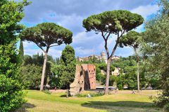 Rome, Palatine. Italy. Palatine, one of the most beautiful and ancient places in Rome Royalty Free Stock Image